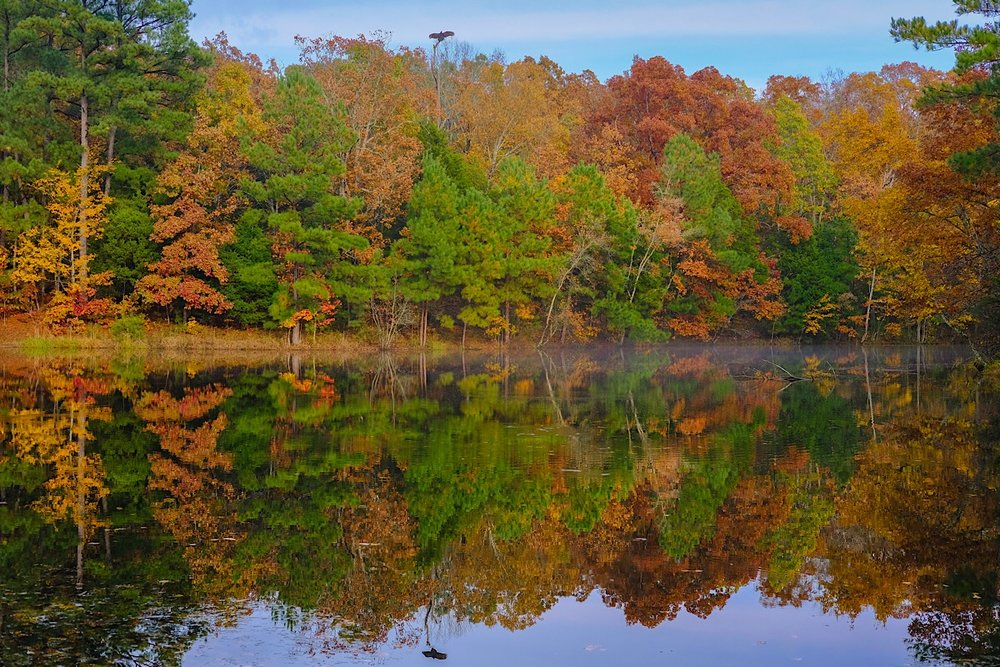 Autumn at Golden Pond.  (click to enlarge)