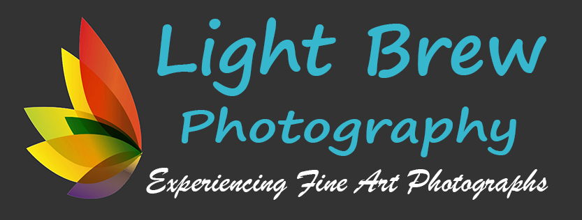 Light Brew Photography