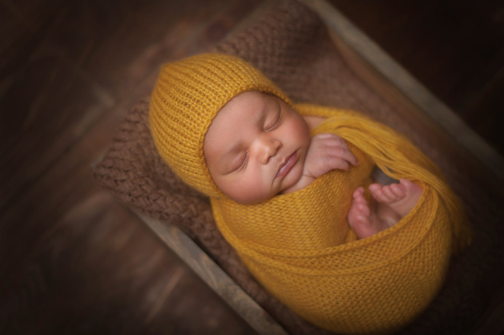 Best-Chicago-Newborn-Photographers