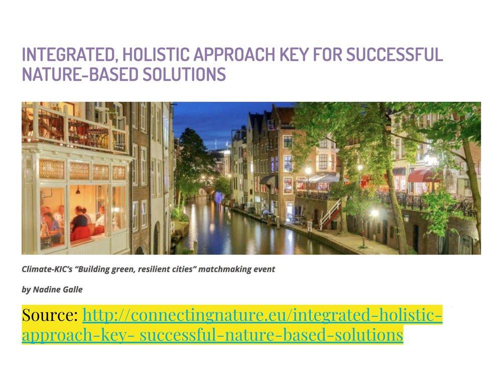 ICLEI NBS Webinar Presentation 18-04-2018 (1) 5-5.jpeg