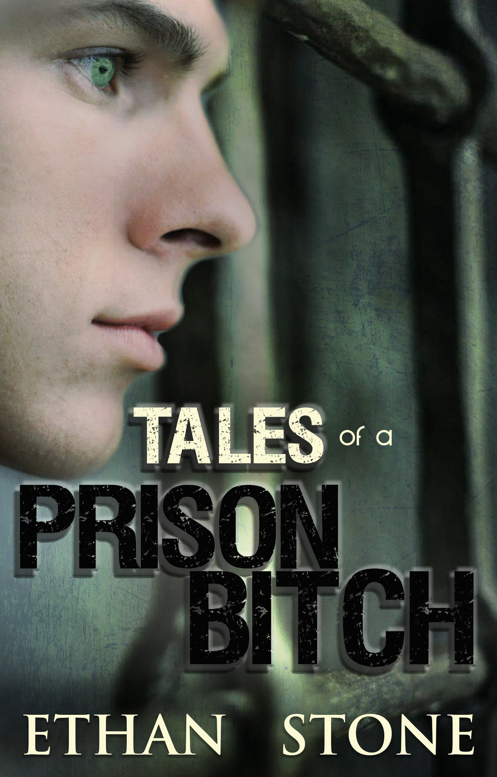 Tales of a Prison Bitch
