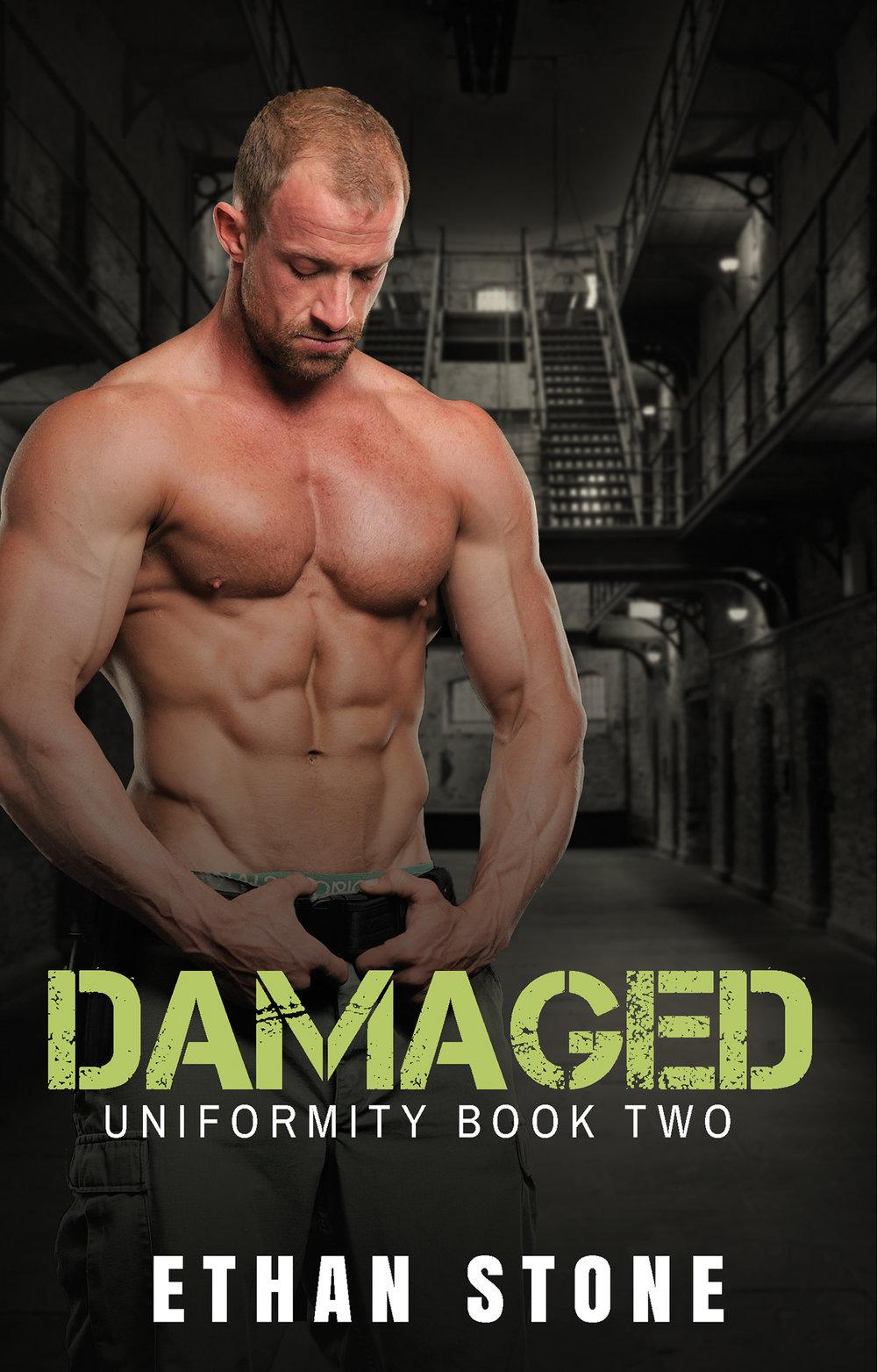 Damaged Ebook Cover .jpg