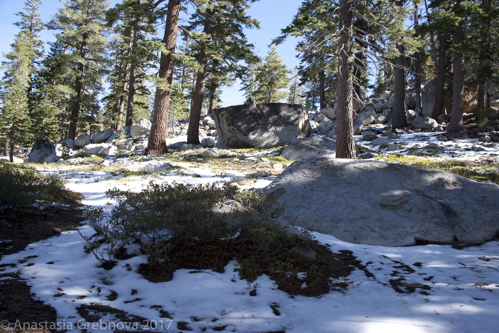 thumbnail-Tahoe.jpg