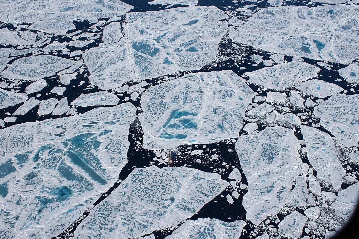 csm_20140721_Polarstern86_Arktis_2014_Aurora_034_StefanieArndt_af0a943cfa_web.jpg