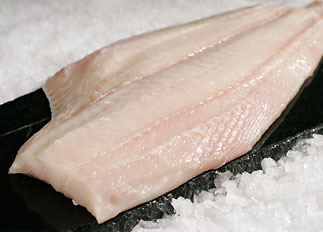 Pacific NW.Halibut.jpg