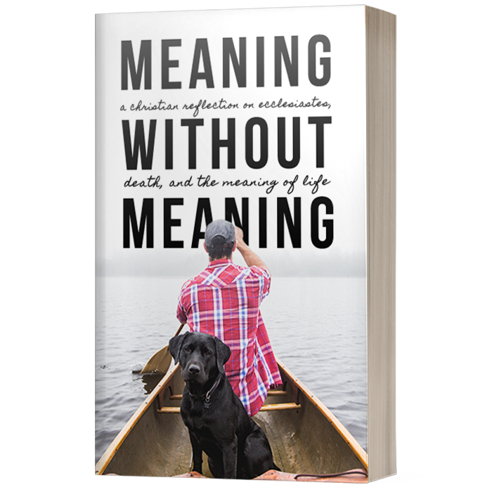 Meaning Without Meaning - Available December 1, 2017!