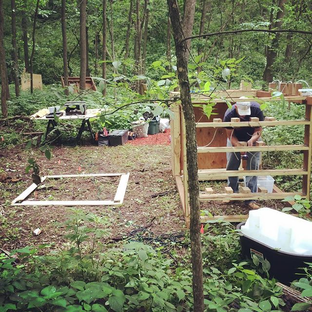 Installing at #eauxclaireswi  find us in the woods... #soundsculpture #fluidprocess #soundart #installationart #interactiveart #sculpture #eauxclaires #troix #watermusic #upinthewoods #pickupmusic #eauxclaires