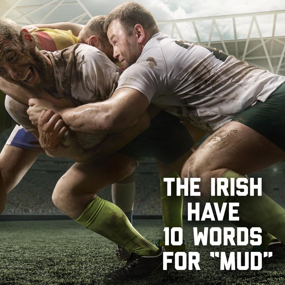 IrishSpring_Mud_v2.jpg