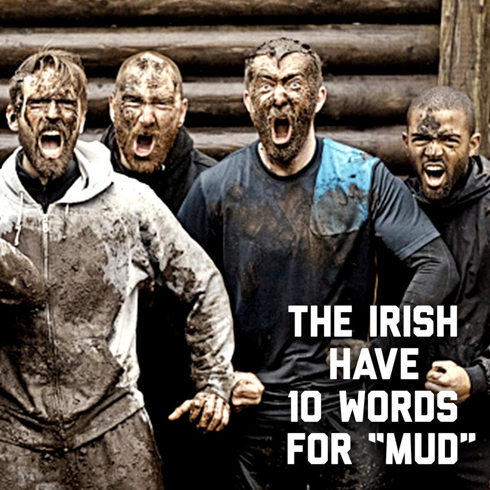 IrishSpring_Mud_v4.jpg