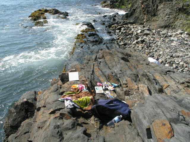 wet paint 2016 - Newport Art Museum, Newport, RIEvery August since 1998 until 2016, I have been a participating artist at the Newport Art Museum's Wet Paint Benefit Event.  Marie Stile painting on the rocks.
