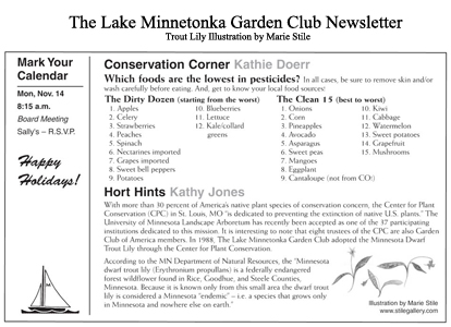 Lake Minnetonka Garden Club  News Letter  Trout Lily Illustration