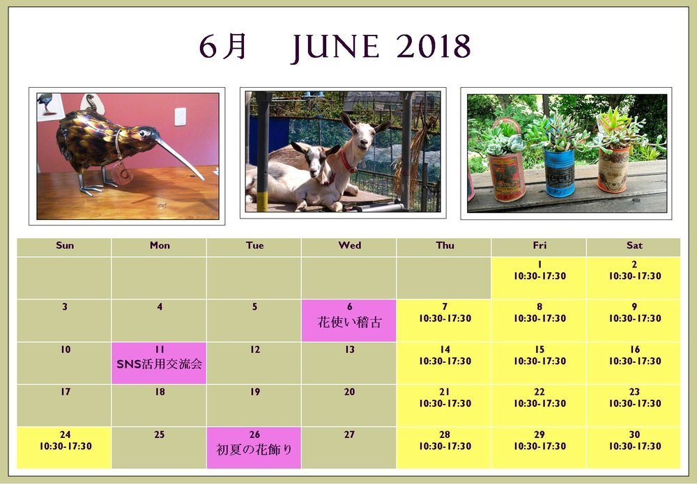 opening hours for june 2018 6月の営業日 kiora cottage