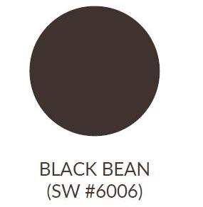 PaintedBlackBean.jpg