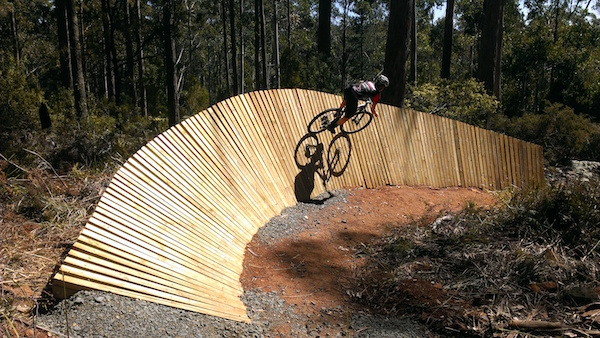 Hollybank MTB trails
