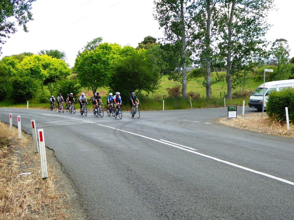 Tasmanian Road Tour