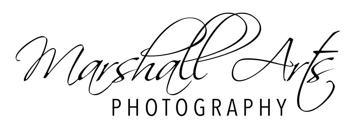 Marshall Arts Photography - Virginia Wedding Photographer