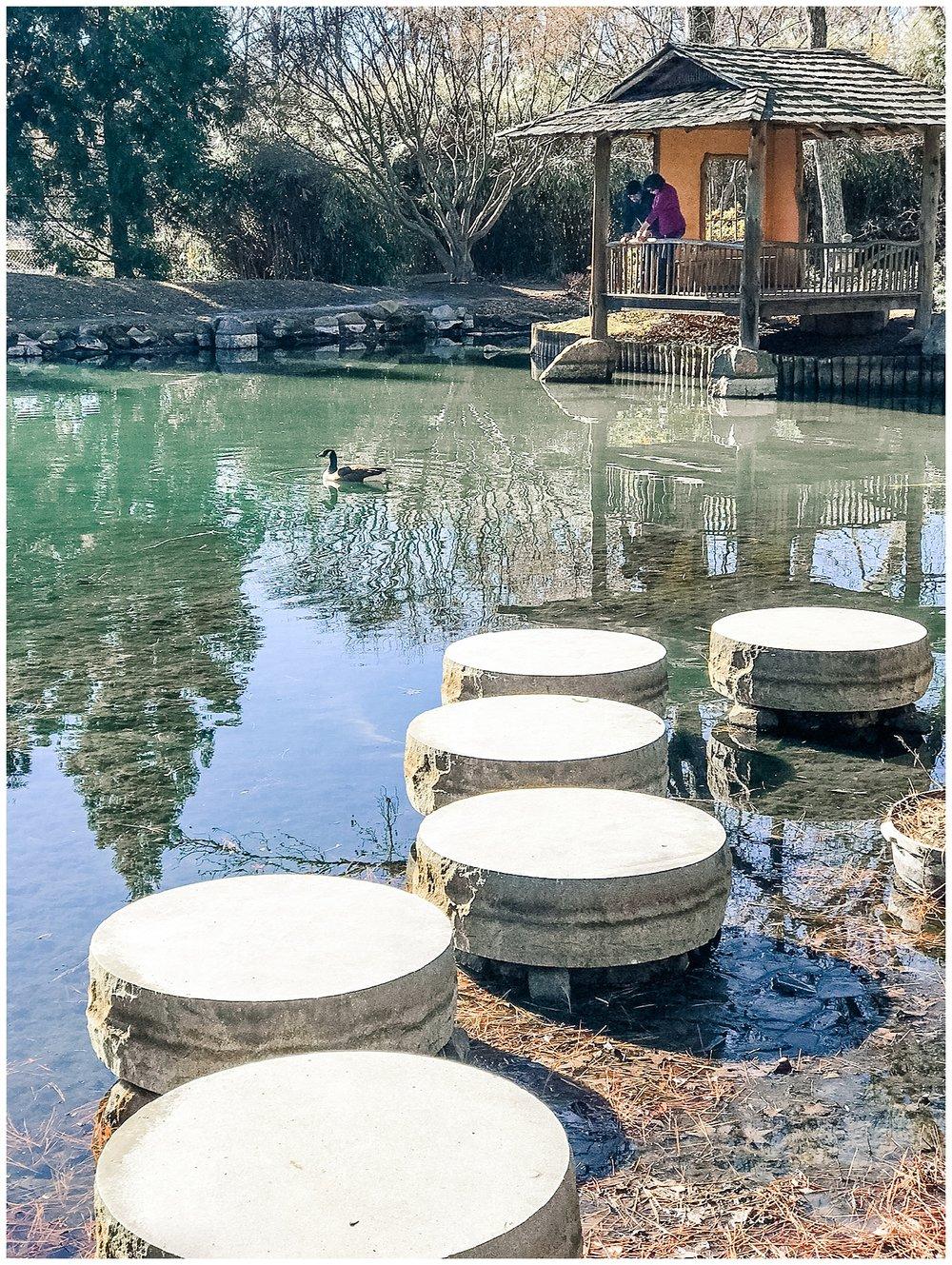 Stepping Stones - Maymont - Richmond, Virginia
