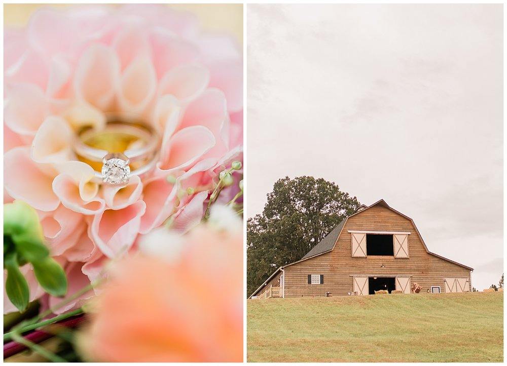 Frog Level Farm Wedding - Virginia Wedding Photographer
