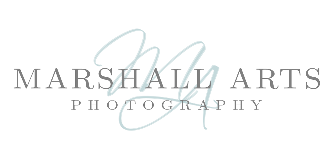 Virginia Wedding Photographer | Marshall Arts Photography