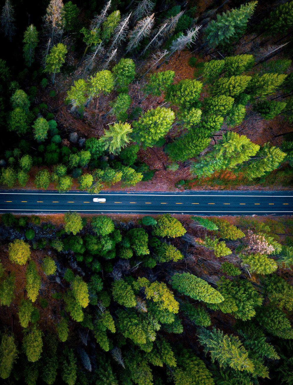 2017_12_10_Yosemite_00016.jpg