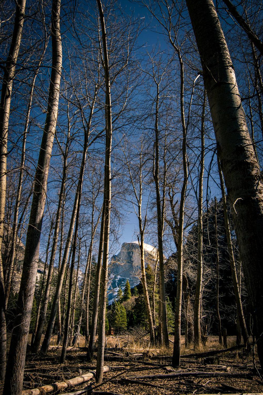 2018_02_25_Yosemite_00015.jpg