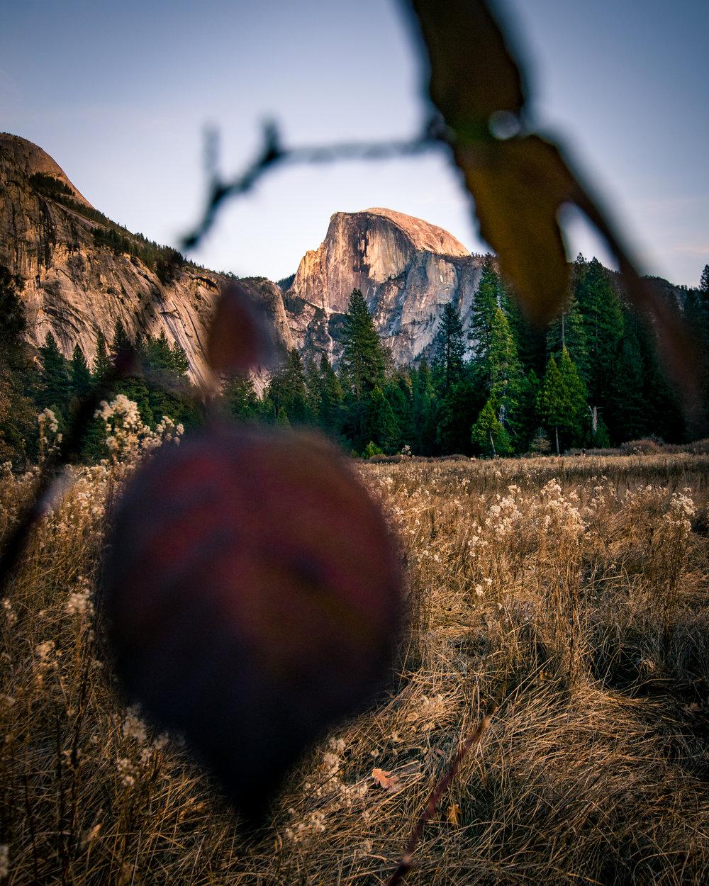 2017_12_10_Yosemite_00513.jpg
