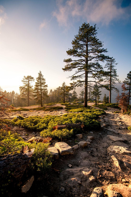 2018_10_11_Yosemite_Road_Trip_00917.jpg