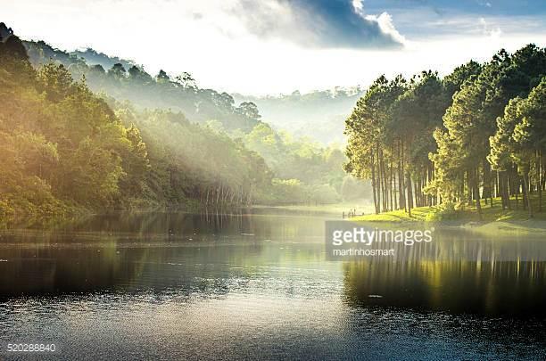 Lake toba - 2-3 days starting from SG$800