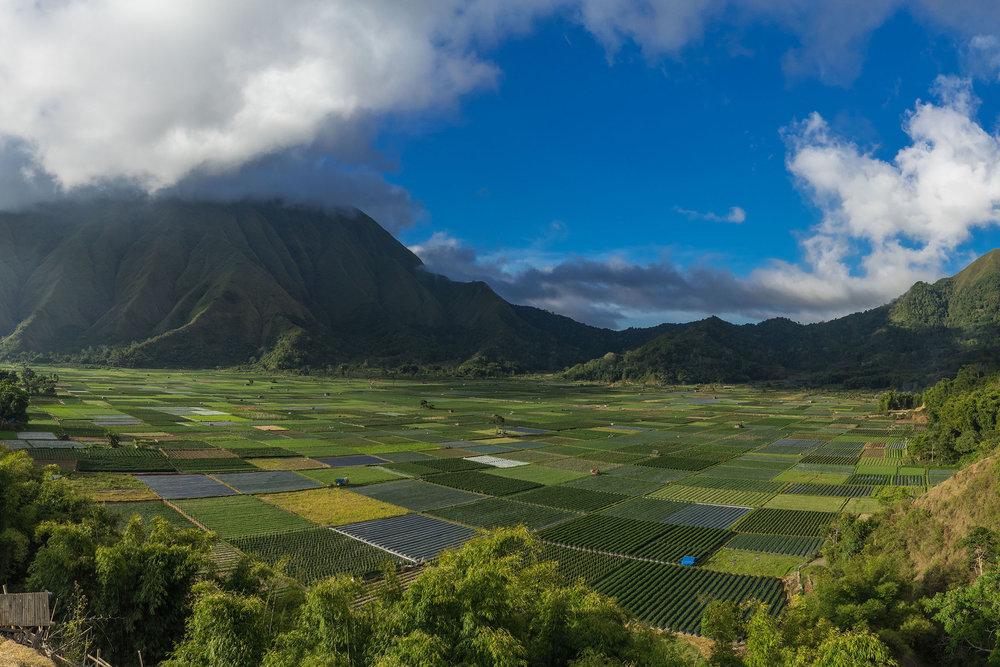 Lombok Utara -