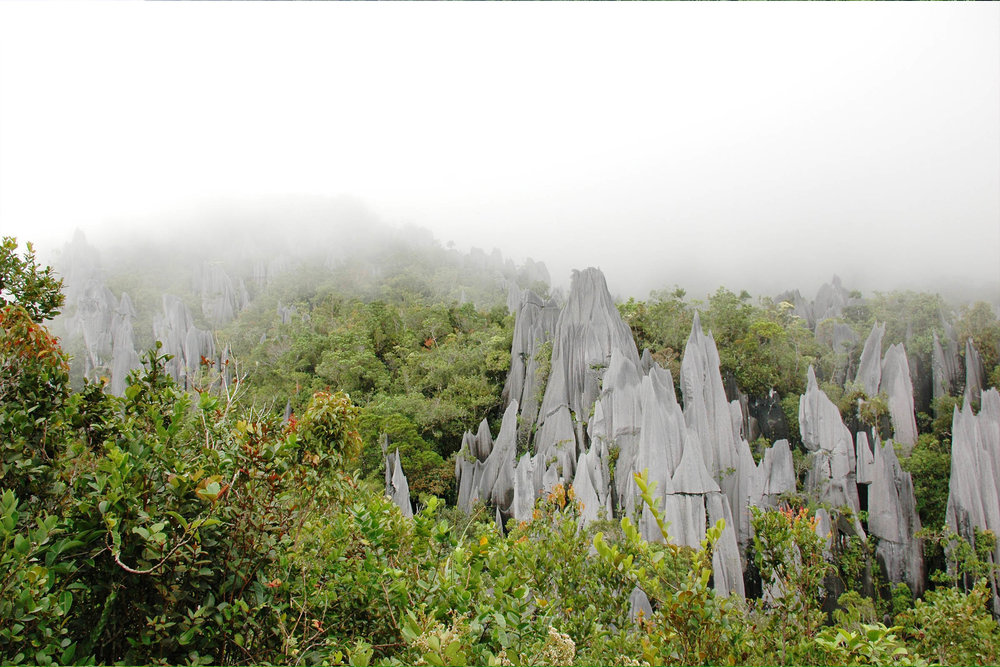 Mulu Natl Park  - Starting at SG$783