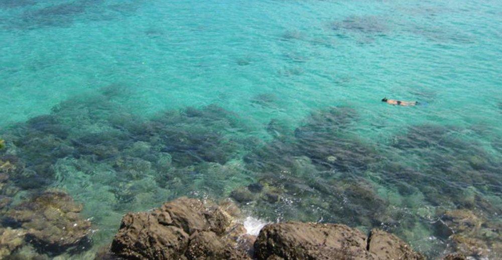 Beach Snorkel Weh.jpg