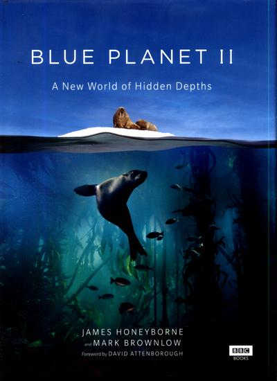 blue planet 2.jpg
