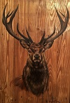 Option 2 - Stag head.  Image shown with a Georgian medium oak background.