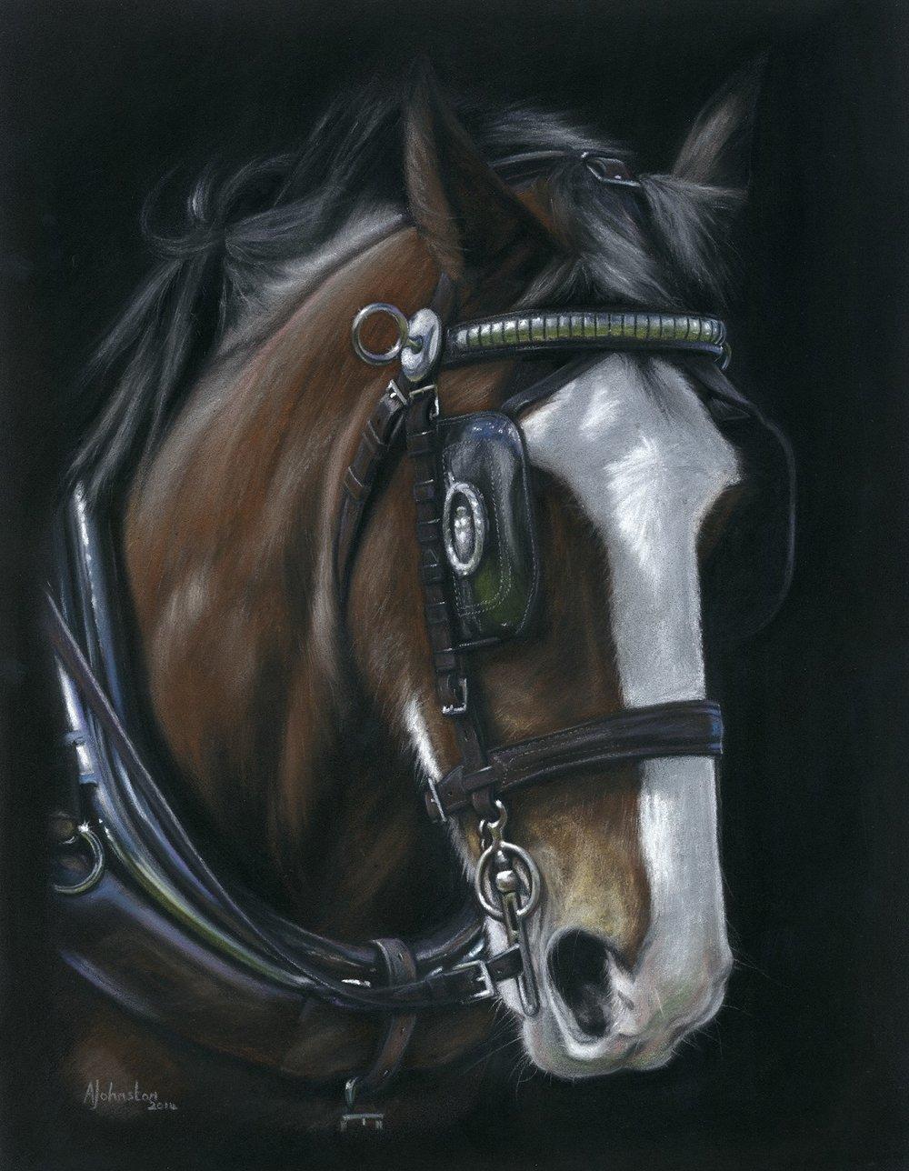 Horse Prints -