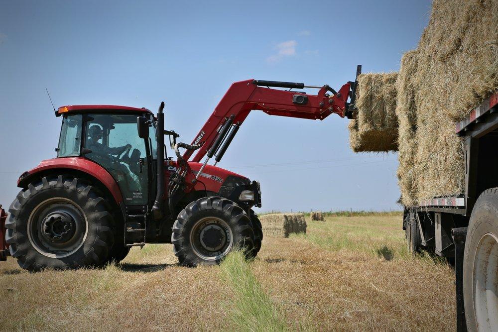 Tractor background 2.jpg