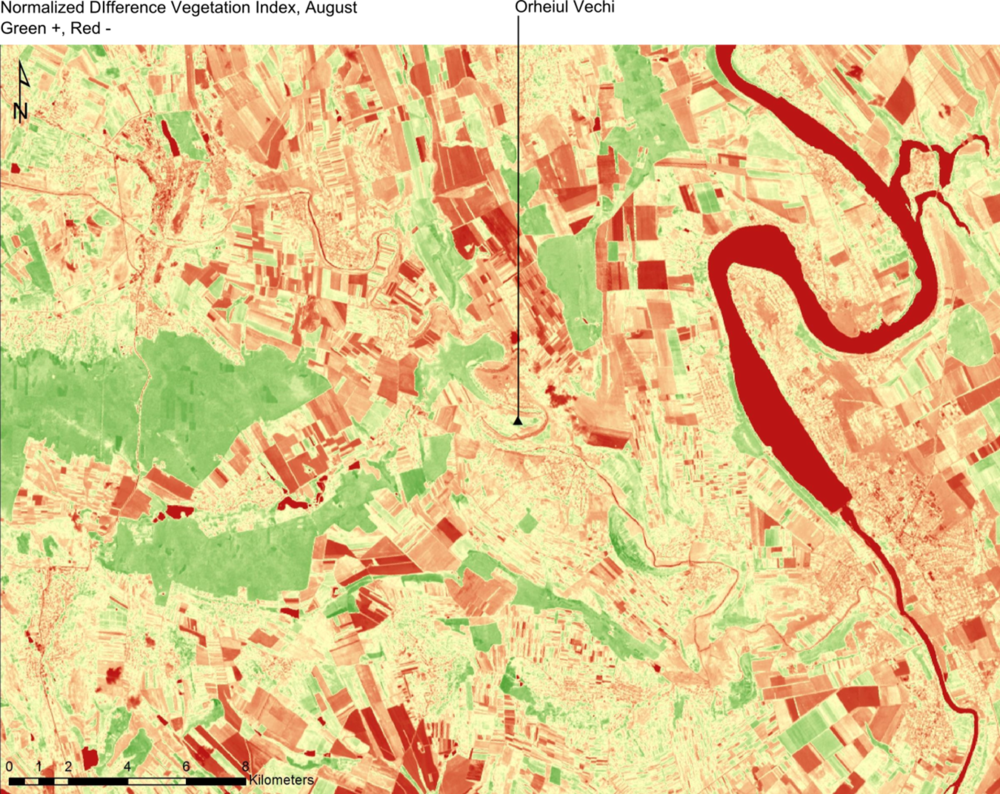 NDVI August (Green +, Red -).png