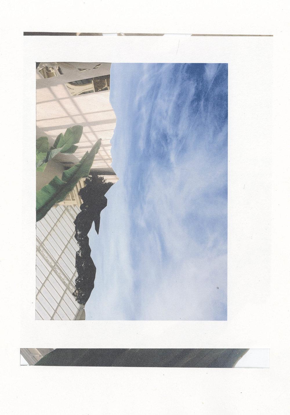 collage_0034.jpg