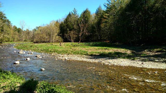 Shelburne, Vermont #vt #nature #spring #photography #stevesharonart