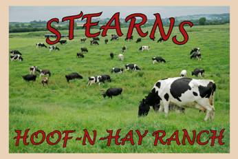 Hoof-N-Hay Ranch - JOHNSON, VTOur Beef animals are 100% grass fed. We recently put up a covered barnyard where they are housed in the winter time on a bedded pack. There they are protected from the elements of the cold winter months. We keep our pigs inside our barn where their pens are cleaned twice a day and they are fed twice a day. We feed our pigs high protein Poulin grain. When available they are spoiled with cream cheese from a cheese factory and garden root vegetables along with second cut hay. They are well cared for. In the summer, we raise three sets of 100 roaster chickens. These birds are raised in a spacious setting outside where they can range as they please. They are fed high-protein grain and fresh water. We raised them 7 weeks before processing.