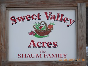 Sweet Valley Acres - HYDE PARK, VTOur farm, SWEET VALLEY ACRES, is located in Hyde Park. We raise chickens, pigs, some beef cows and our four children who love to help! In fact, our three youngest have taken over the chickens⸺one feeds and waters, another collects the eggs, and our daughter cleans and packages them! They look forward to growing their little business. We are pleased to offer you our Farm Fresh, Non GMO Eggs. Our hens are pastured three seasons out of the year and we supplement with kelp and flax to further increase the nutritional value of our eggs. We feed only non-GMO grain during the winter months.