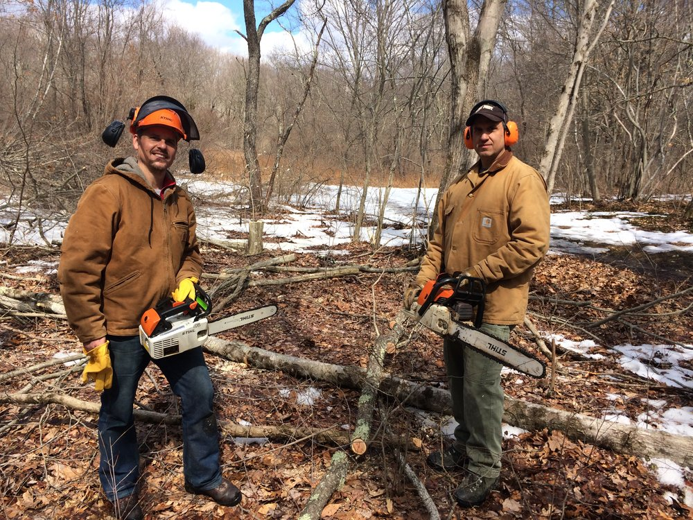 Land Trust executive director David Brant (left) and habitat manager Lou Bacchiochi creating early-successionalhabitat in  Trout Brook Valley  at marker #1 on the white trail.