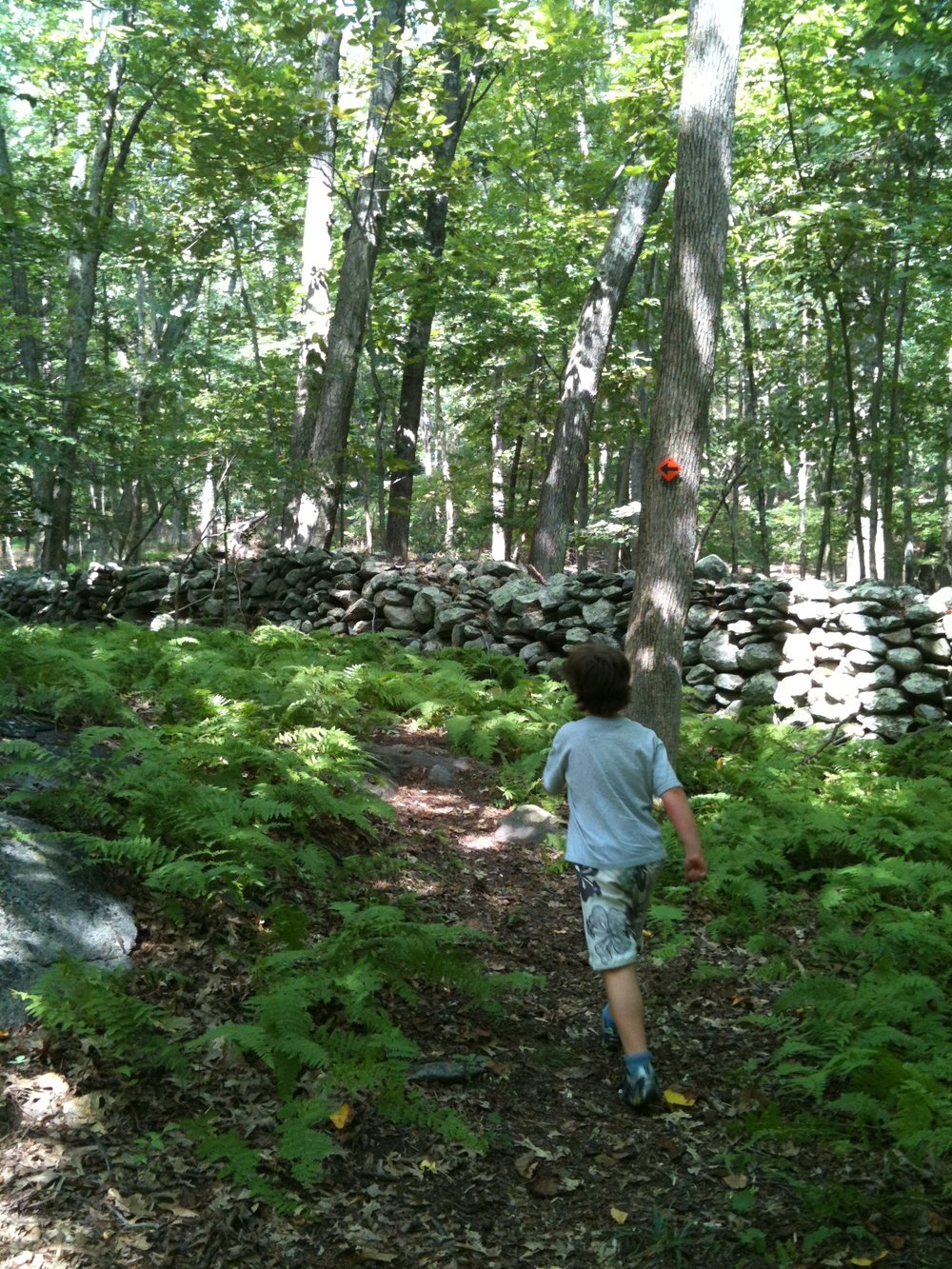 Josh hiking Moore Preserve.JPG