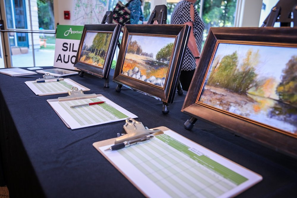 There was a silent auction with paintings donated by a local artist, Gail Bell, who has been painting Aspetuck Land Trust open spaces in Fairfield. Thank you, Gail!
