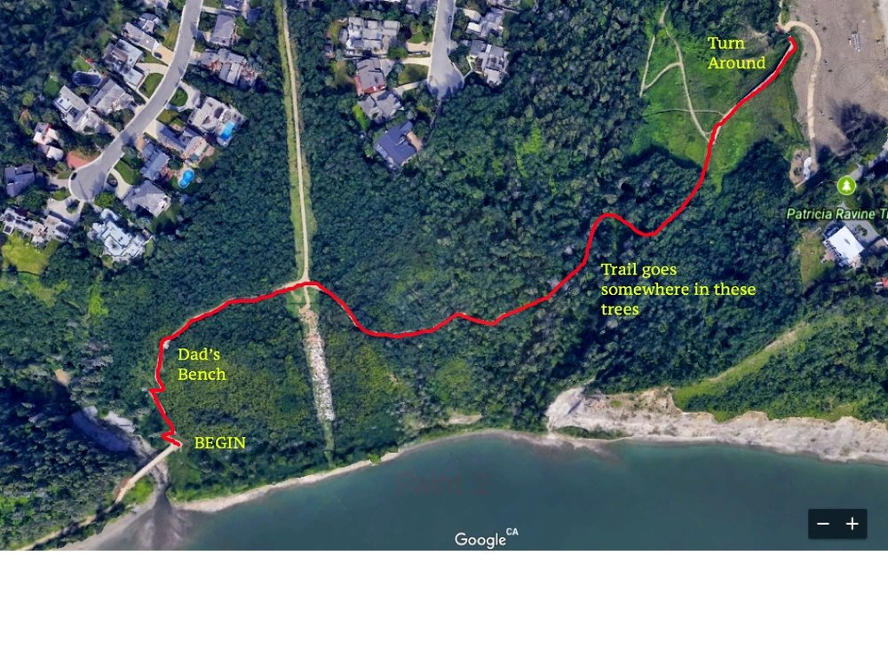 Here's a map of the trail for the race.