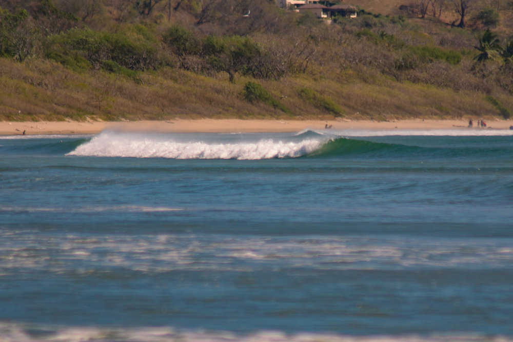 lil wave.jpg