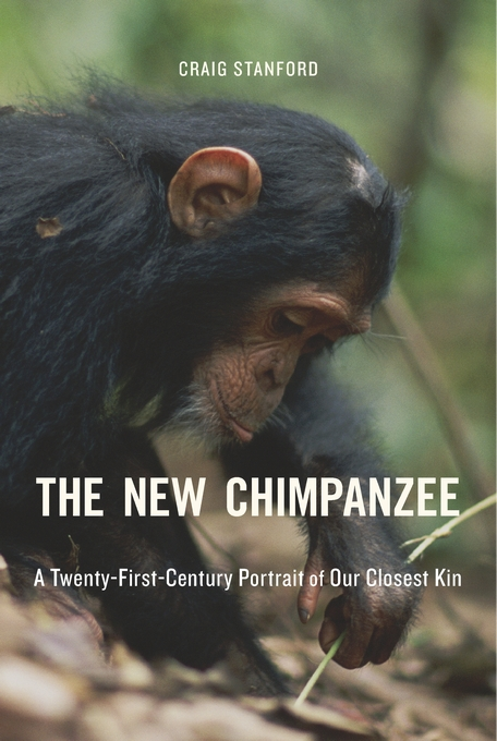 The New Chimp cover.jpg