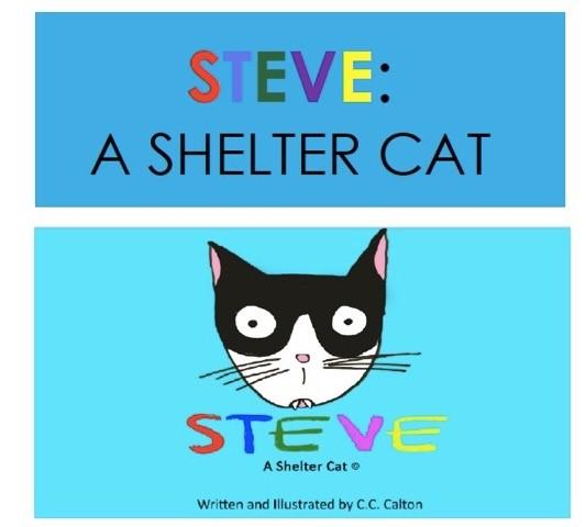 Steve a shelter cat.jpg