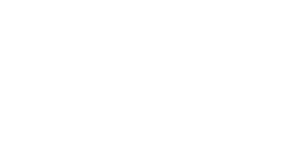Butterfly VPN.png