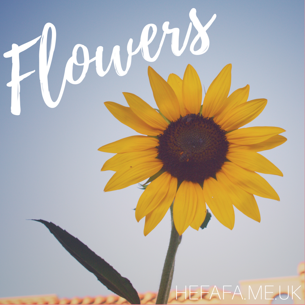 Flowers - Heather Rowland  Just a collection of some really pretty flowers...  Published 30th August 2017