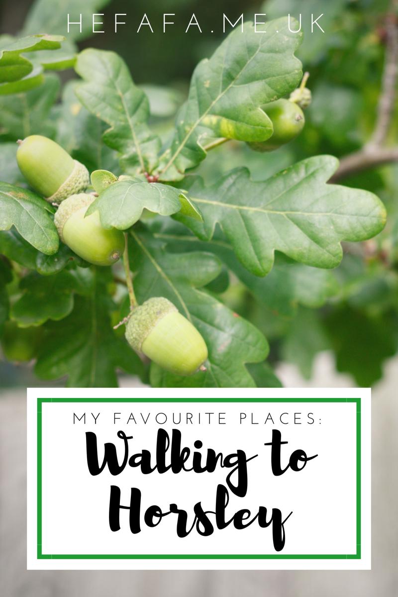 My Favourite Places: Walking to Horsley - Heather Rowland on hefafa.me.uk  Published 2nd September 2017